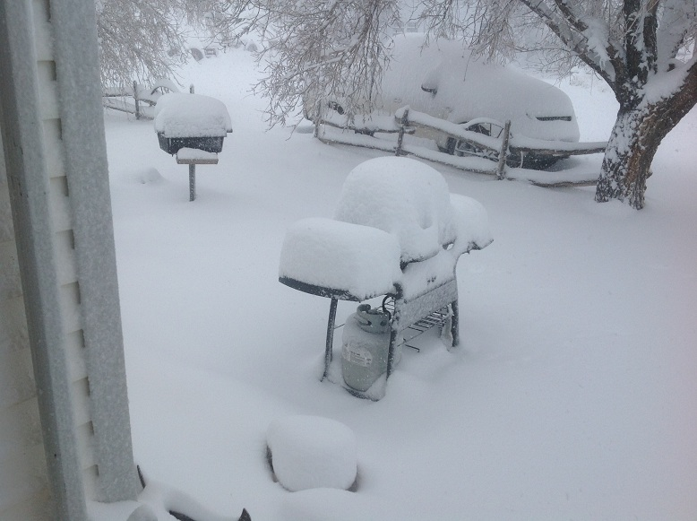 Image result for dalhart texas blizzard