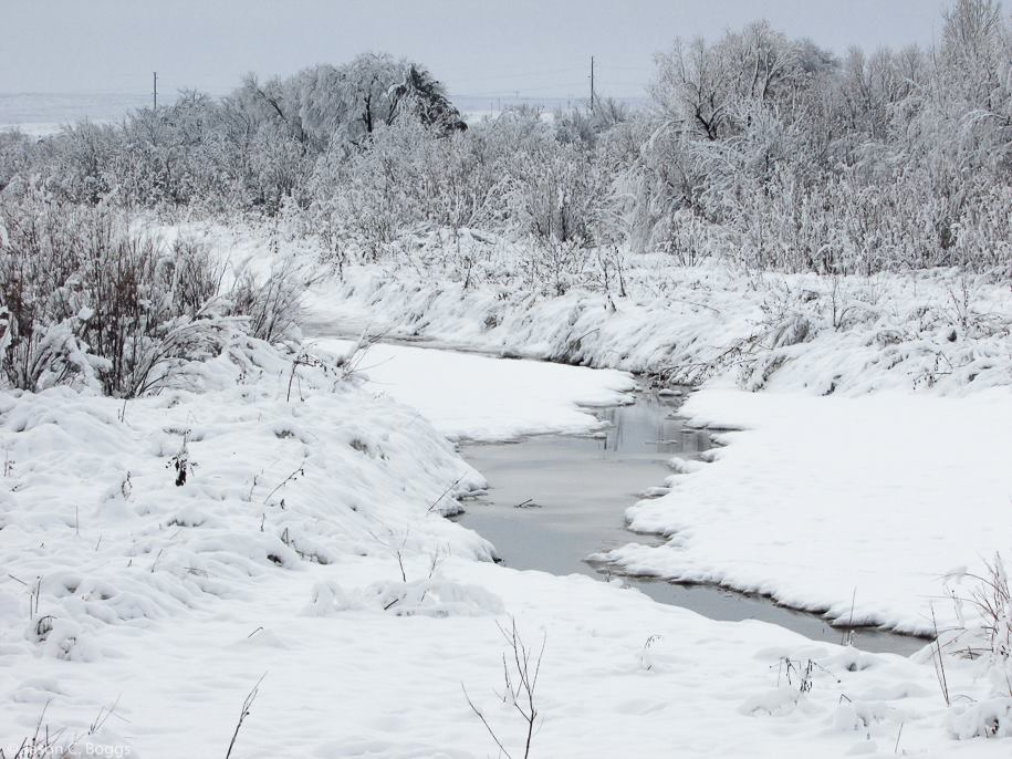 Snowy creek near Lefors (Jason Boggs)