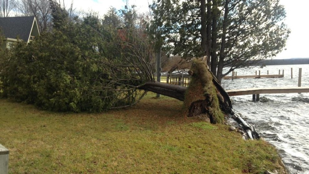 Grand Traverse County Tree Damage due to strong winds