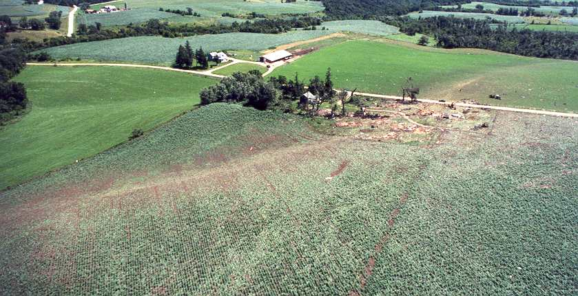Lewiston, MN Tornado of July 8, 1999