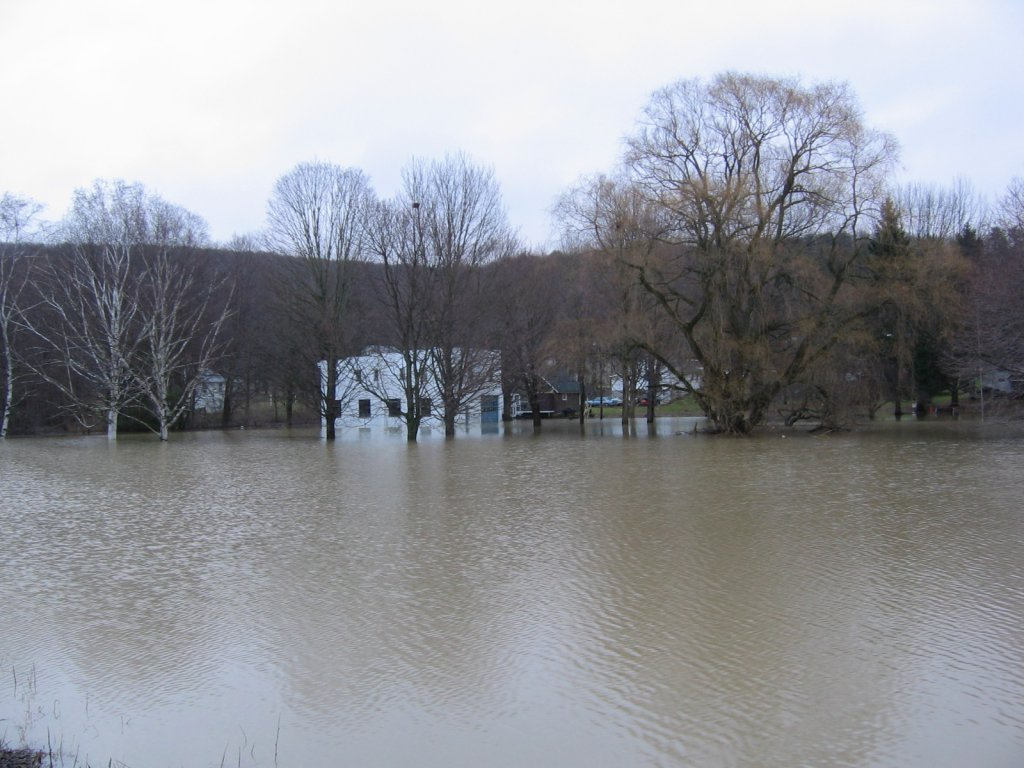 More Field Flooding Near Vestal, NY.