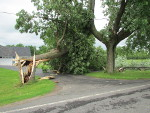 Click for a larger view of damage in Verona, NY area.