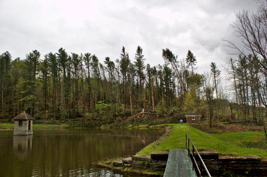 Trees down Norwich reservoir.