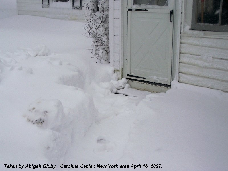 Snowy picture from Caroline Center, New York area April 16, 2007.
