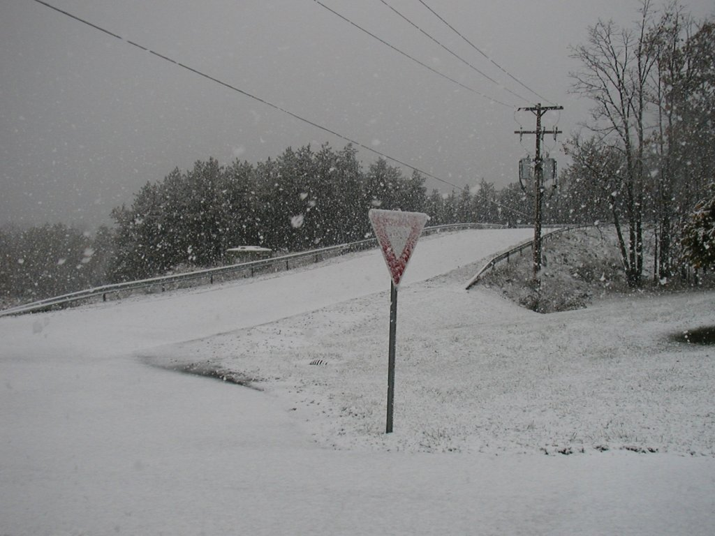 Snow at NWS Binghamton.
