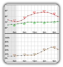 Hourly Forecasts