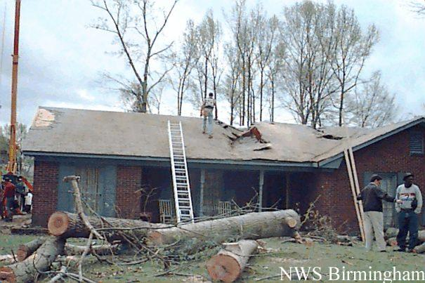 Large tree downed  on house.