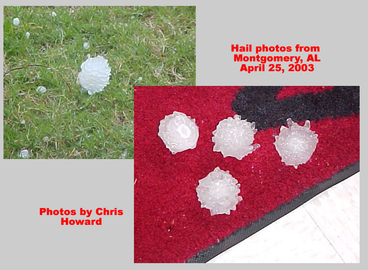 Hail that fell in Dallas County