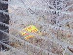 icy fence in randolph county