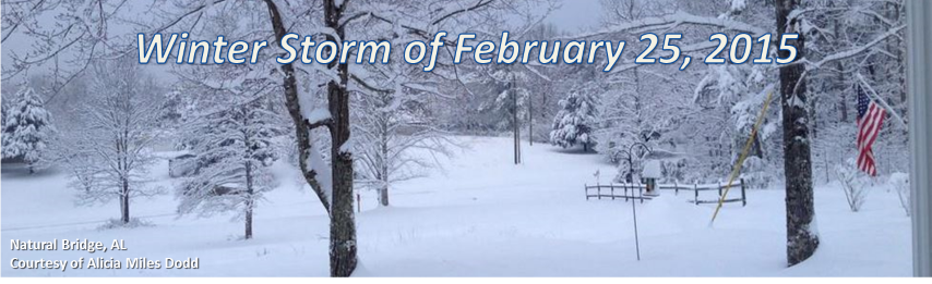 Winter Storm of February 25, 2015