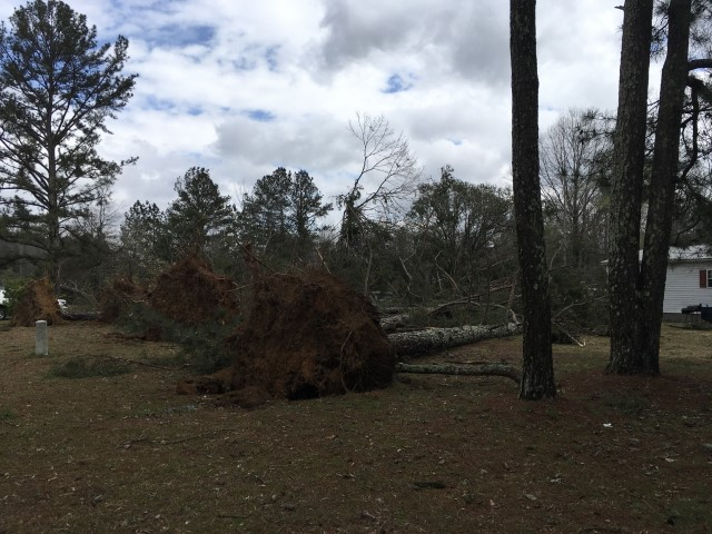 15 Tornadoes Confirmed From 3 19 Storms Alabama Weather