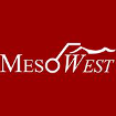 MESOWEST OBS DISPLAY