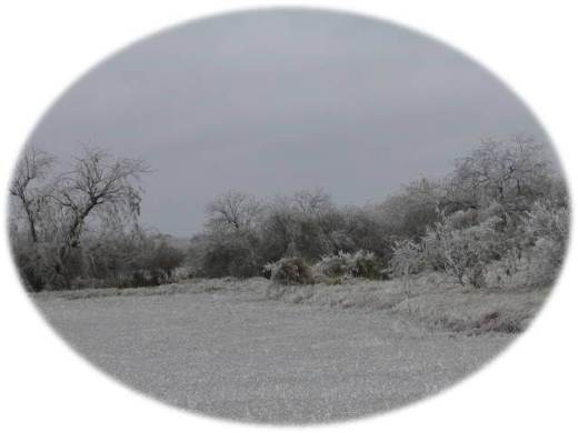 Photo of wintry scene at Brownsville/South Padre Island International Airport, February, 2011
