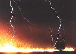 Millions of dollars in property loss are the result of lightning caused fires
