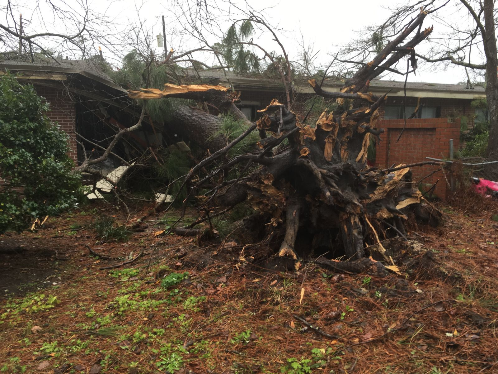 Fort Stewart, GA EF-1 Tornado - February 3, 2016