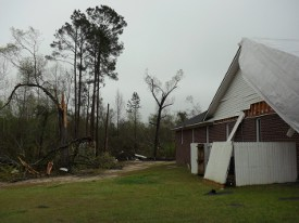 Tree and home damage caused by the tornado.