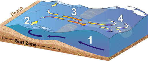 Anatomy of the Rip Current