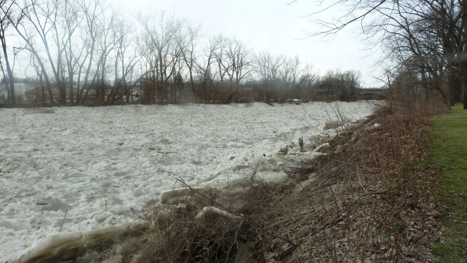 Chagrin River - Willoughby ice jam