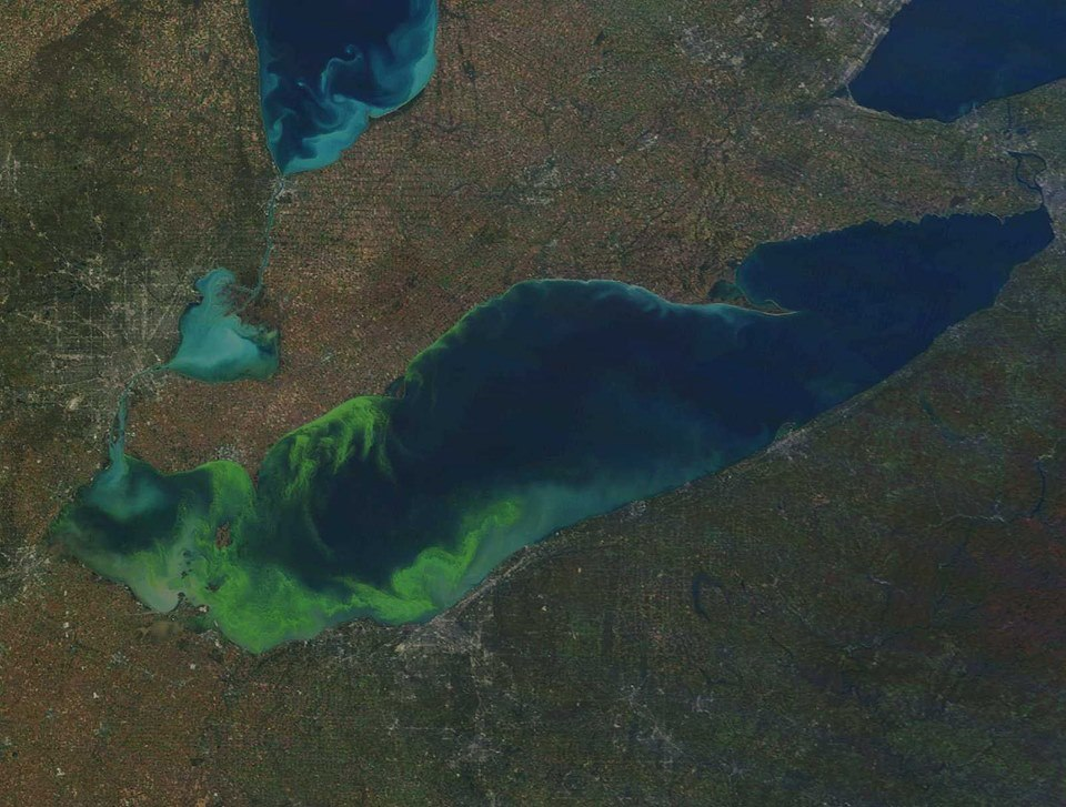 MODIS satellite image of Lake Erie on October 9, 2011, showing an algal bloom considered to be among the worst ever observed. Credit: NOAA. CoastWatch.