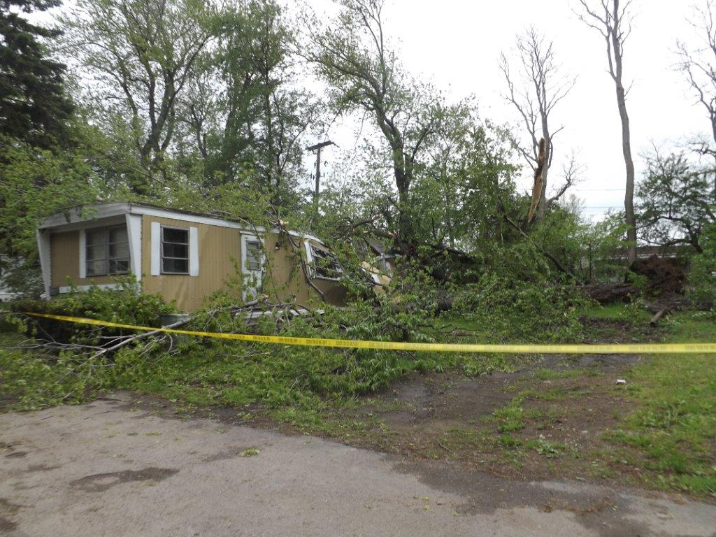 Photo of a tree on a mobile home in Millcreek Township.