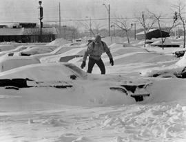 picture of buried cars