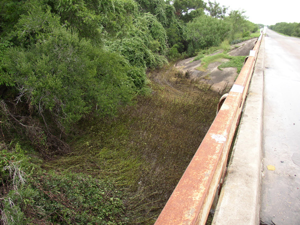 Atascosa River at Whitsett (I-37 Bridge)