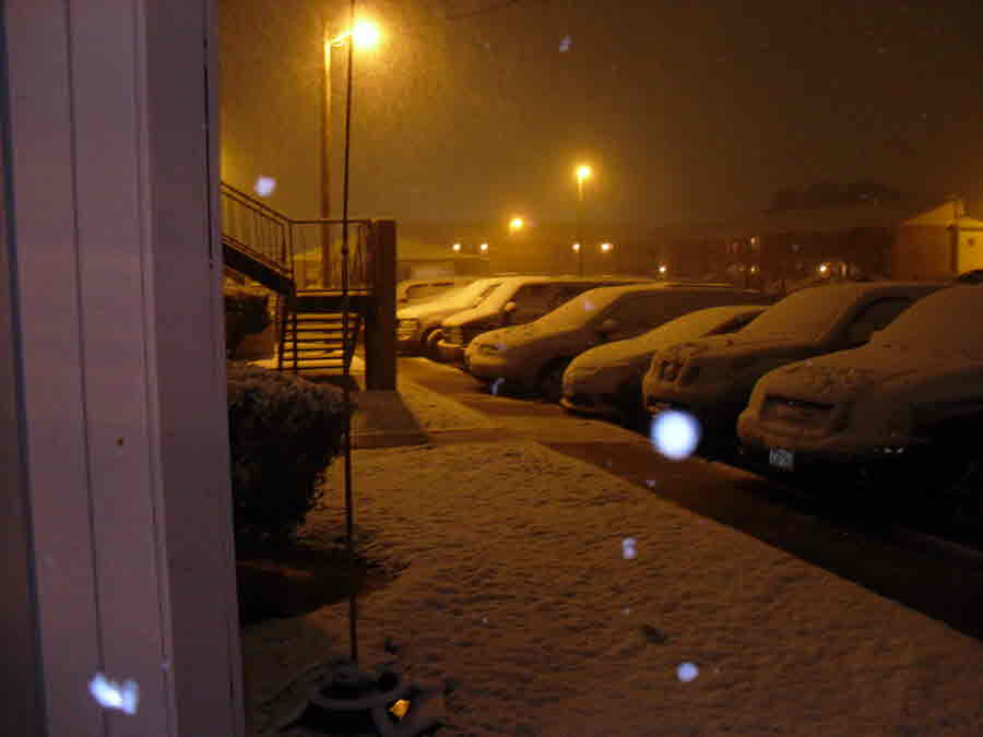 Victoria: Snow Covered Cars in Parking Lot - Photo Credit: Terrry Turner