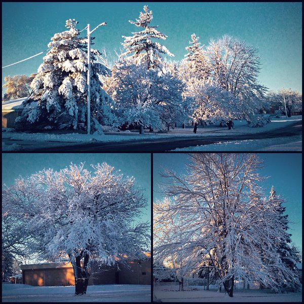 First Winter Storm Of The Season November 21 2015