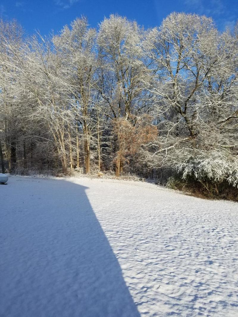7, 2017 Winter Storm