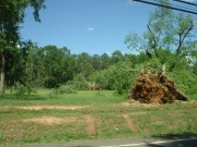 [ Tornado Damage from Newton county. ]