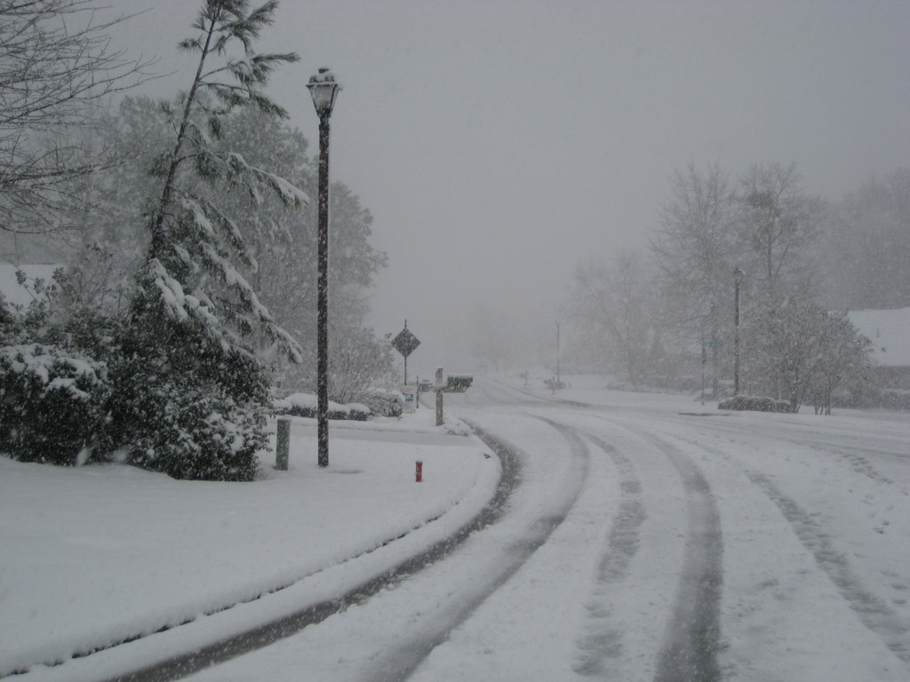 Snowfall Totals in Georgia - March 1, 2009