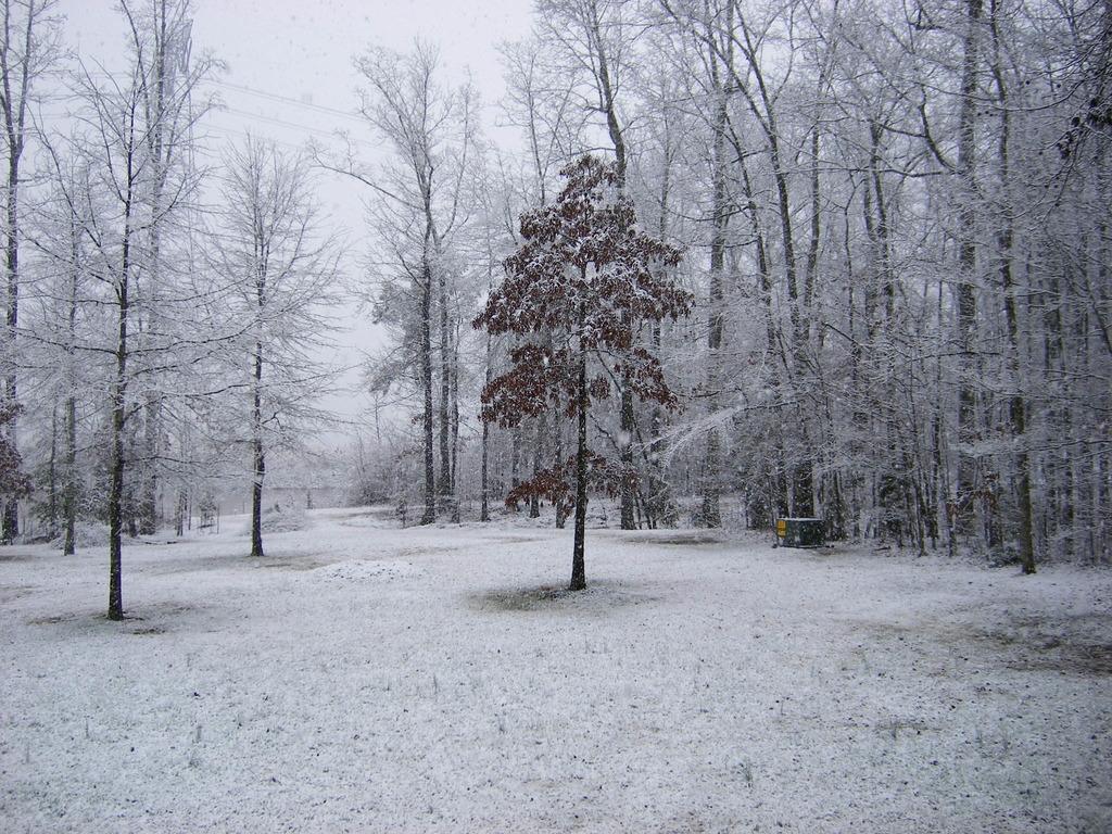 Snowfall Totals In Georgia March - Us snowfall map 2009