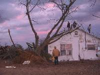 [ House & tree damage in Wilcox County north of Pitts ]