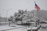 Picture of snow at the National Weather Service in Ft. Worth during the morning hours of February 11th, 2010.