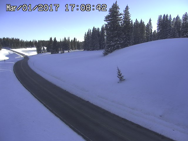 After the storm photo of fresh snow along Highway 65 over the Grand Mesa