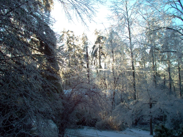 Heavy ice accumulation near Hendersonville, NC