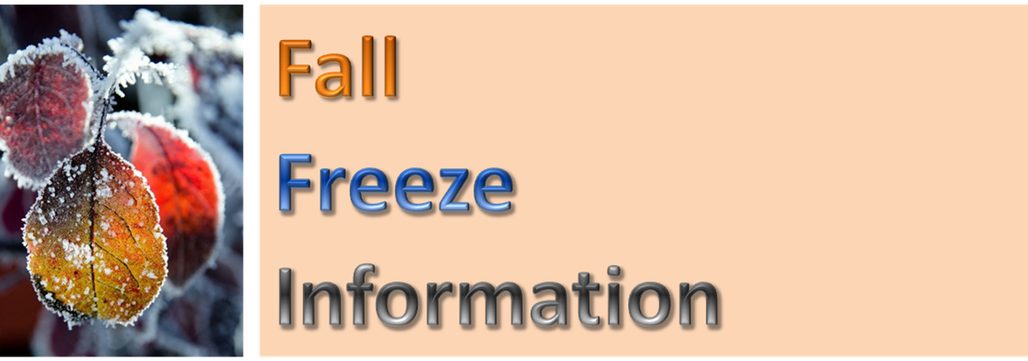 Fall freeze graphic