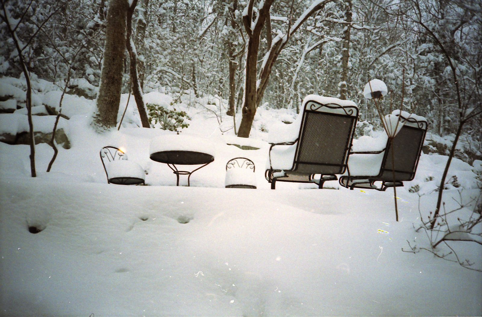 Madison County Al March 12 14 1993 Heavy Snowfall Pictures