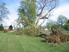 Storm Damage in Jackson County