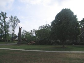 Storm Damage in Madison County