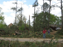 The tornado snapped several trees along Ingram Road, at the beginning of the damage path.