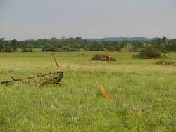 Near Mt Hope in Lawrence County...a hay baler that was thrown about 1/2 mile by the then EF-5 tornado.