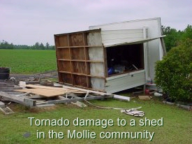 Tornado damage to a shed in the Mollie Community