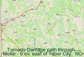 Tornado damage path through Mollie - 6 mi. east of Tabor City