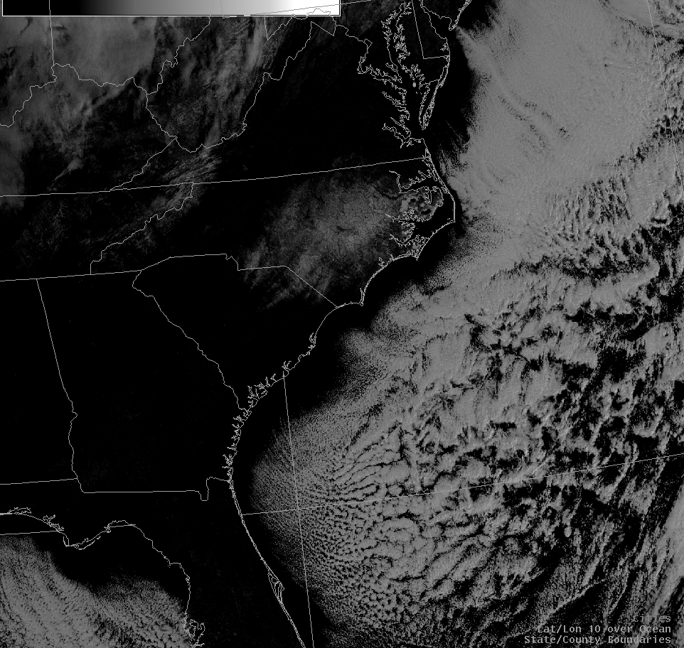 An image of visible satellite imagery from the Jan 20, 2009 snow event