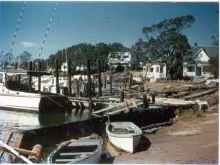 Hurricane Hazel 60th Anniversary Photos