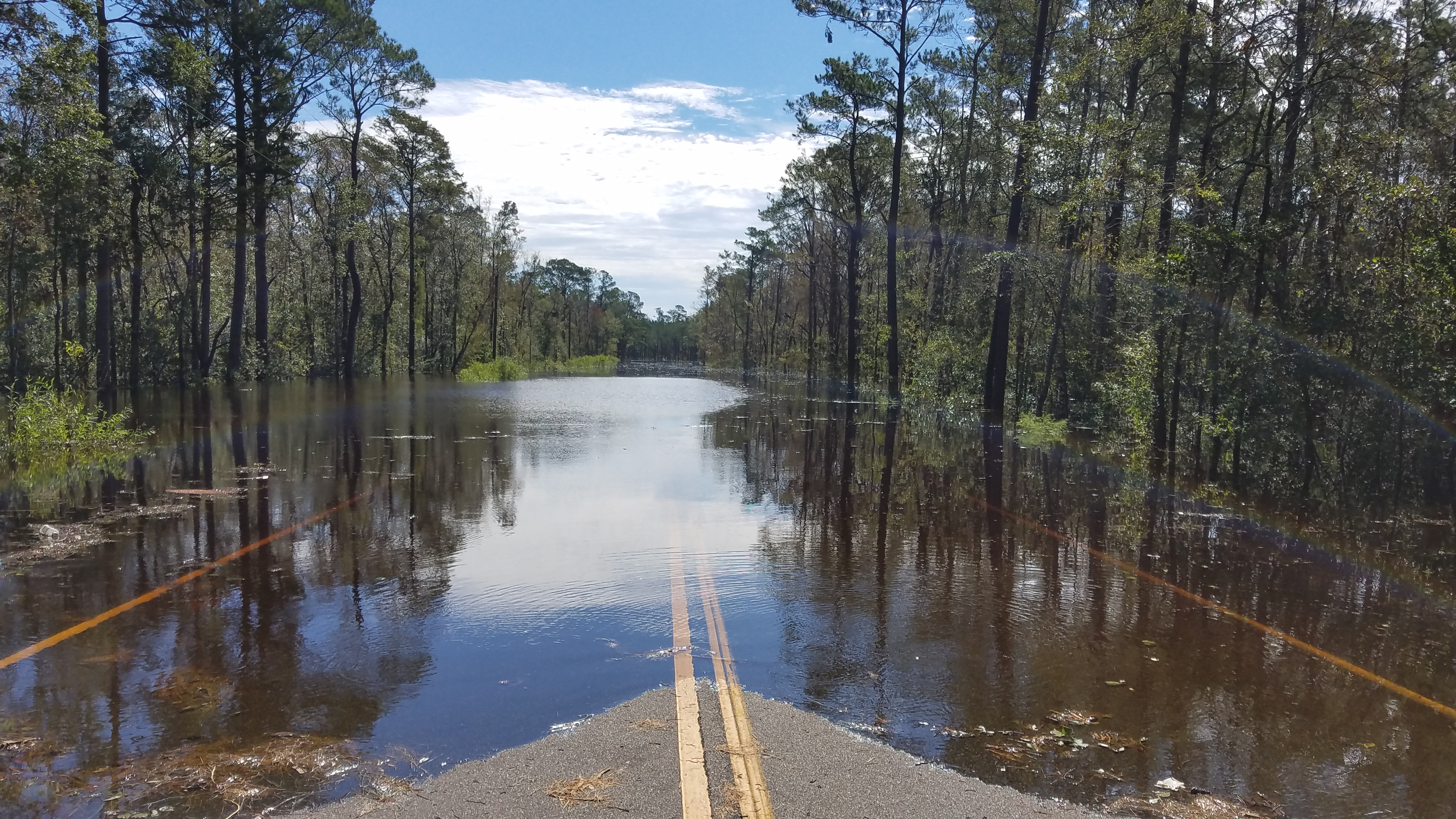 Flooding along Holly Shelter Road near the Island Creek bridge