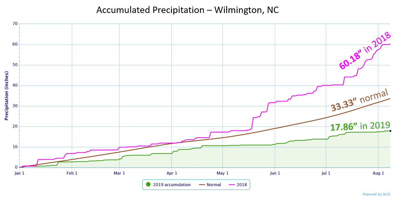 Wilmington year-to-date rainfall through August 7