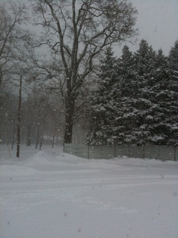 Snowfall picture from Constantine Michigan on afternoon of January 1st