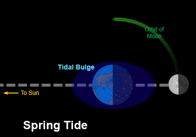 Earth-Moon-Sun configuration for Spring tide